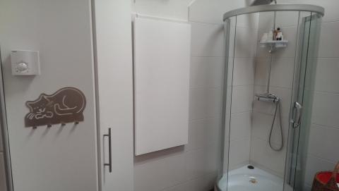 Infrarotheizung Badezimmer